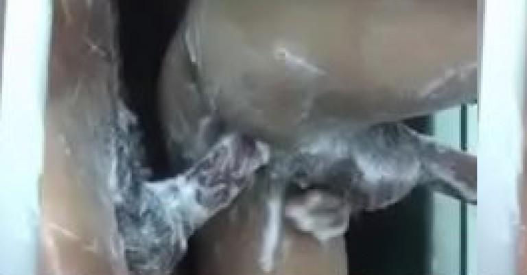Indian gay MMS of bathing desi gays anal sex in hostel
